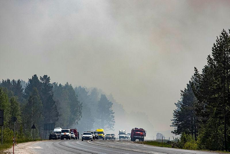 שריפות ב סיביר