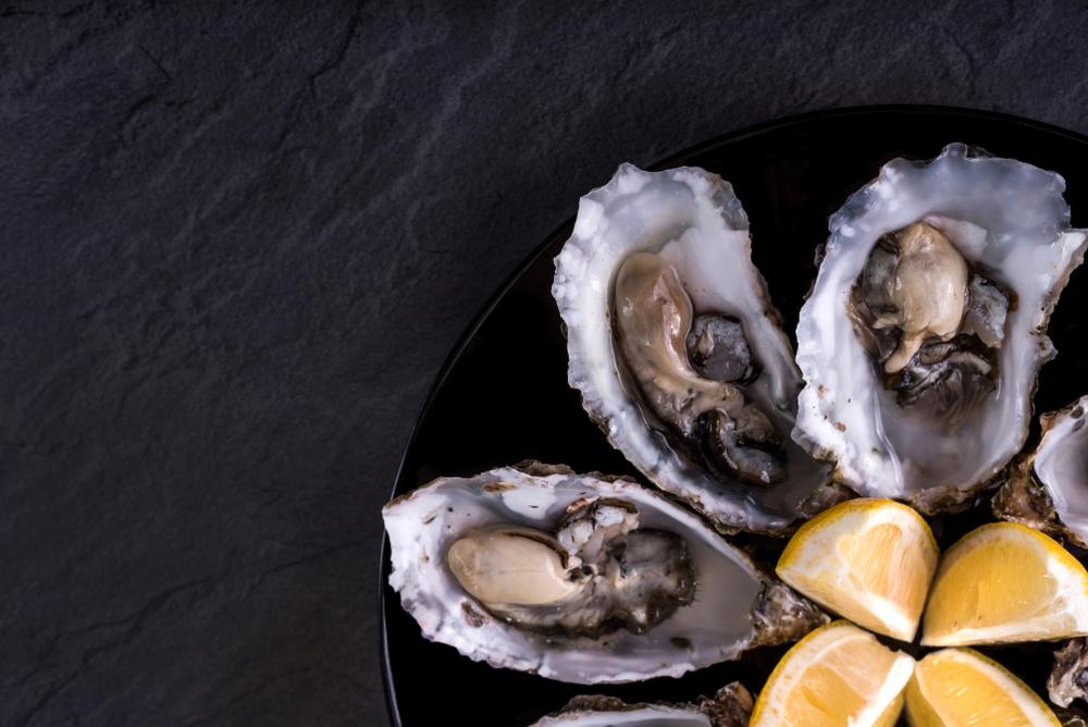 אויסטרס אויסטרים אויסטר צדפות פירות ים מסעדה