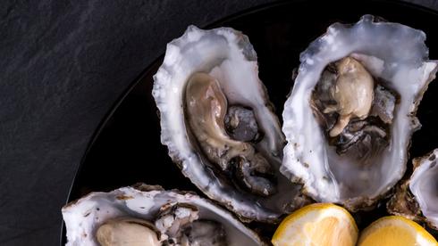 """מסעדות בארה""""ב מוציאות את פירות הים מהתפריט: """"זינוק מטאורי במחירים"""""""