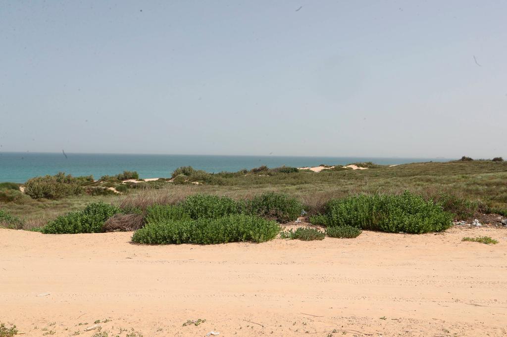 שטח שעליו יוקם מלון חדש ב חוף לידו אשדוד