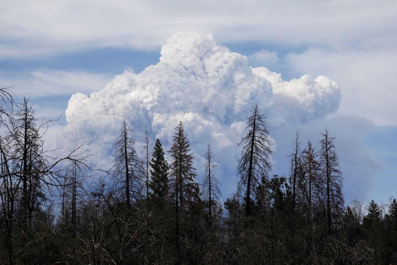 פוטו משבר האקלים שריפות קליפורניה עשן