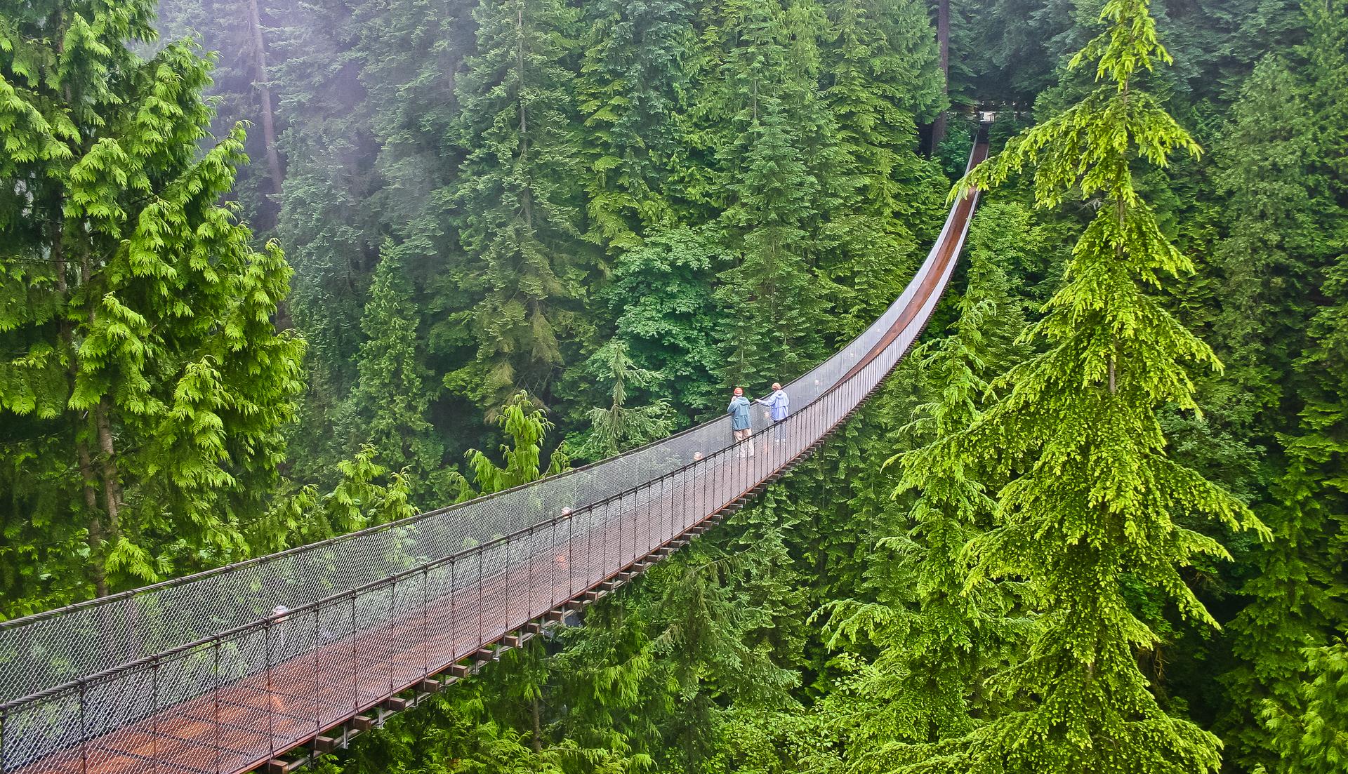 פוטו מקומות שחייבים להיות בהם גשר קפילנו ונקובר קנדה