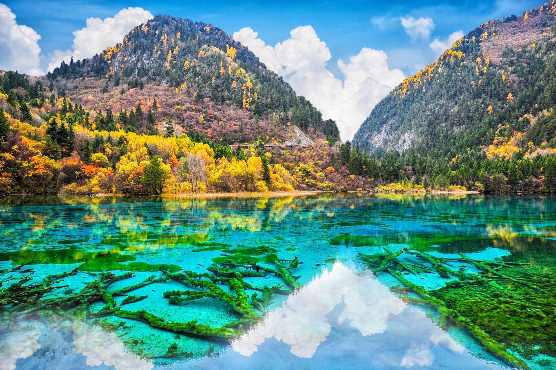 פוטו מקומות שחייבים להיות בהם נהר חמשת הפרחים סין
