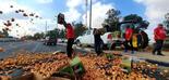 פתיחת השוק ליבוא לא מבטיחה הורדת מחירי המזון