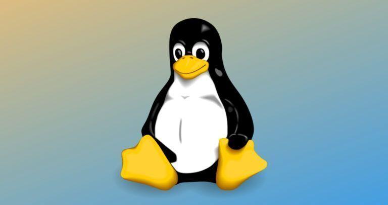מצערכת הפעלה לינוקס Linux