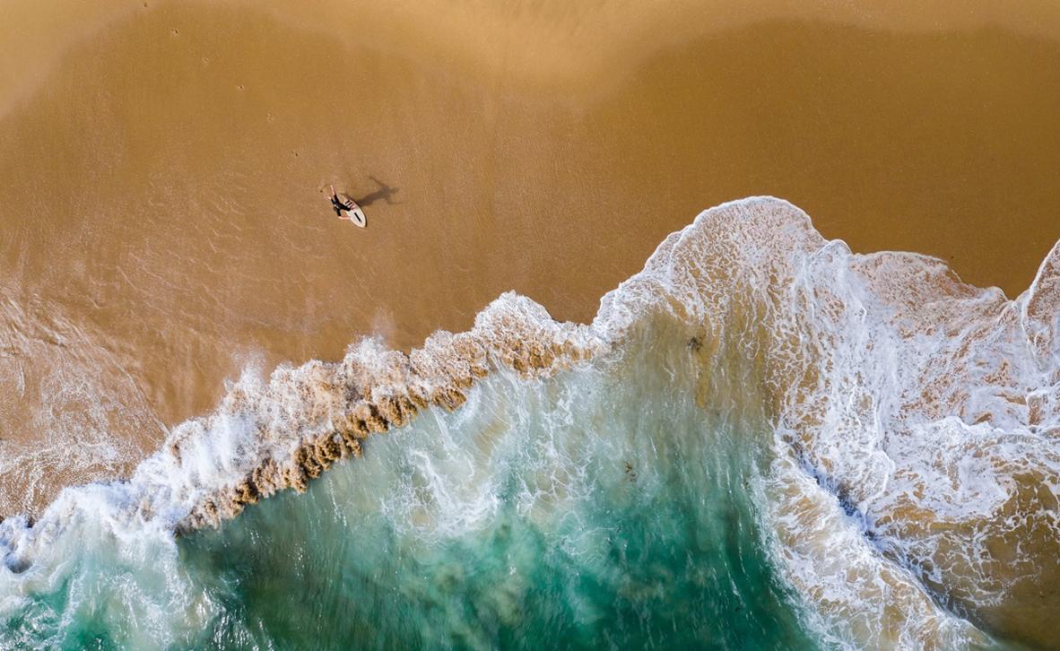 פוטו תחרות צילומים מדאונים 2021 גולש חוף קליפורניה