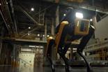 יונדאי, ארצה! היצרנית הקוריאנית מציגה כלב רובוטי