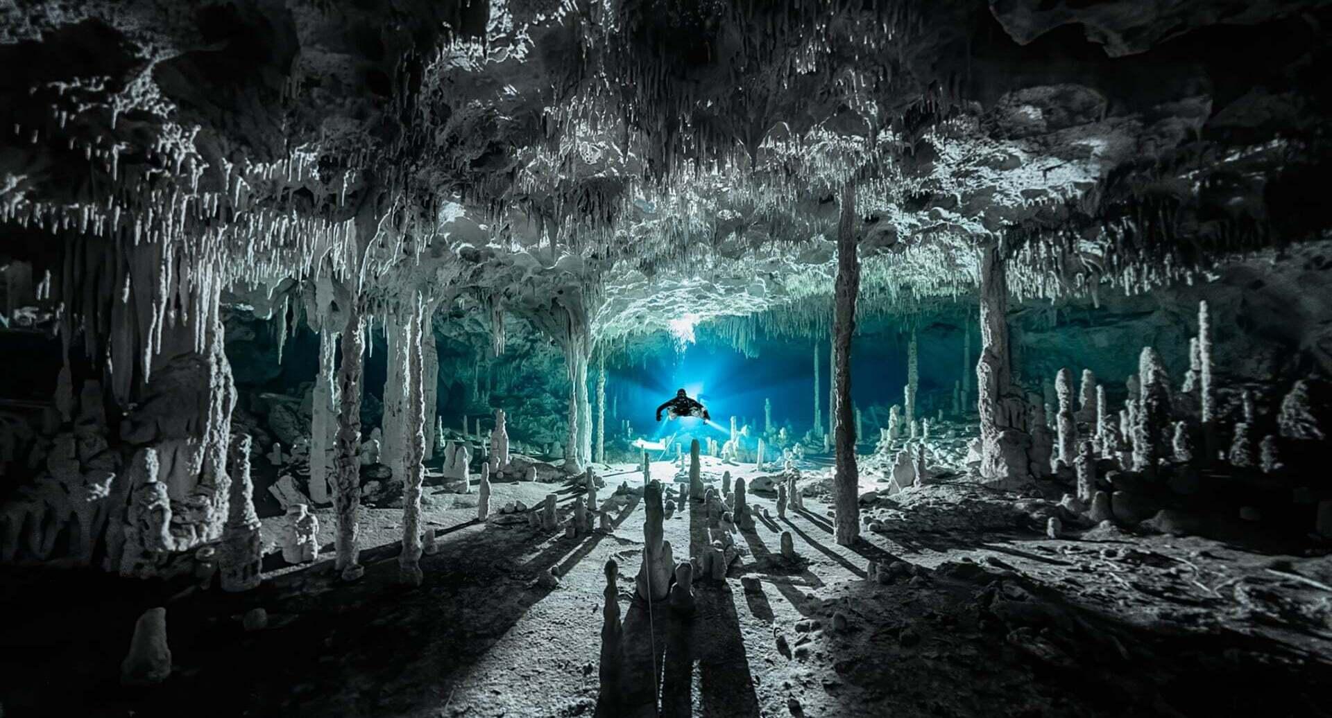 פוטו תחרות צילומים באוקיאנוס 2021 צוללן
