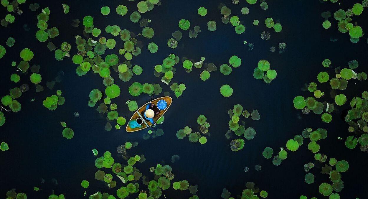 פוטו תחרות צילומי טבע The Nature Conservancy קאנו במים ויאטנם