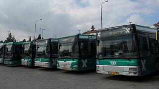 אוטובוסים של אגד, יואב דודקביץ