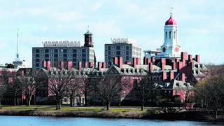 הקמפוס של אוניברסיטת הרווארד בקיימברידג' מסצ'וסטס