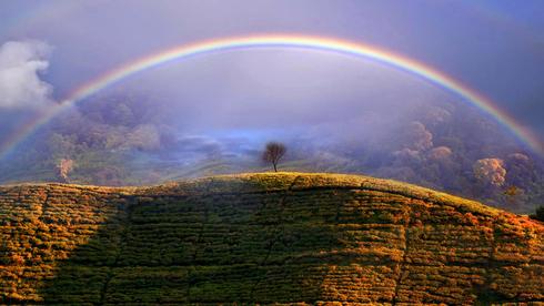 התחזית - יהיה נאה: תמונות מתחרות צילומי מזג אוויר